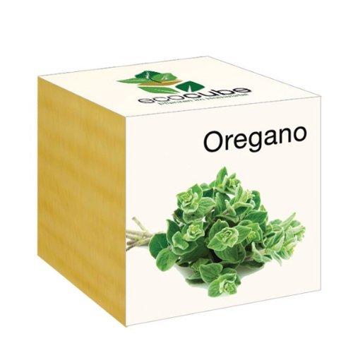 Ecocube Oregano im Holzwürfel