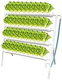 Kacsoo Hydroponic Grow Kit Hydroponisches System Früchte PVC Hydroponic Pipe Home für Hydroponische, Erdlose Pflanzenanbau-Systeme (Hydroponic Grow Kit 36 Löcher 4 Rohre, Stehender Typ)
