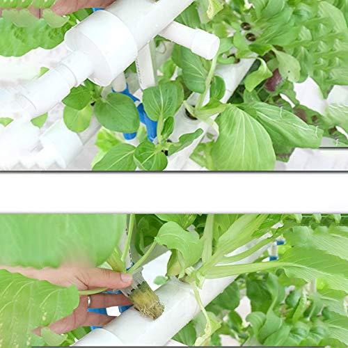 CRZJ Grow Kit 88
