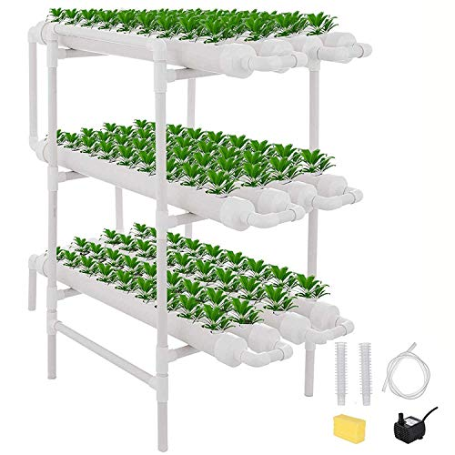 Kacsoo – Grow Kit für 108