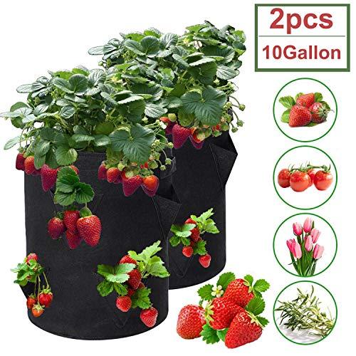 Sumree Erdbeere Pflanzsack mit Griffe und 8 seitliche Taschen 43 Liter