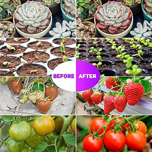 Pflanzenlampe Automatische Zeitschaltuhr 4H/8H/12H - Semlos LED Vollspektrum Pflanzenlicht Dimmbar 8 Lichtstärken, Auto-On/Off-Wachstumslampe für Zimmerpflanzen