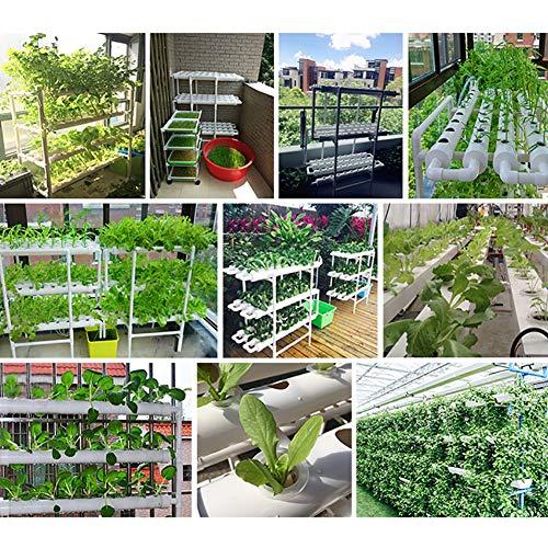 CRZJ Hydroponiksystem mit 90-Loch-Kits, vertikales Hydroponik-PVC-Rohrpflanzengemüse mit Dämpfungspumpe und Schwamm