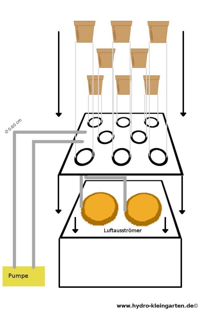 Hydroponik System selber bauen: Explosionszeichnung für den zusammenbau des DWC-Systems