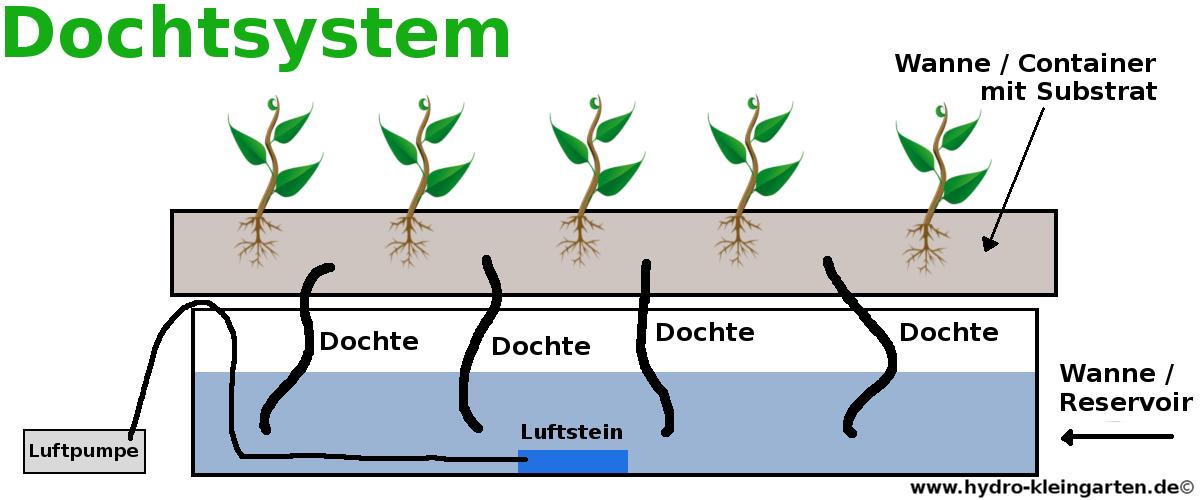Dochtsystem Aufbau