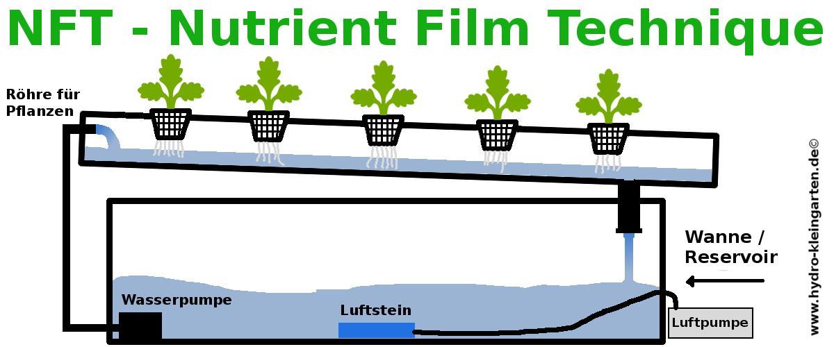 Nutrient Film Technique der Aufbau